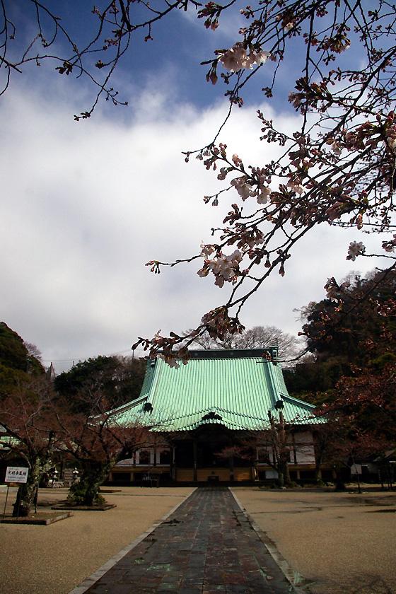 komyoji2.IMGP3834.jpg